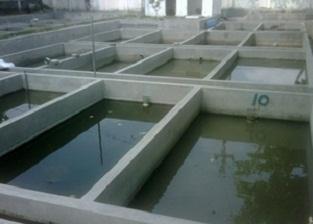 cara budidaya ikan lele di kolam tembok,cara membuat kolam lele permanen,cara pembuatan kolam ikan lele dari beton,cara beternak ikan lele di kolam beton,