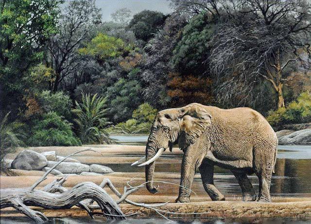 tranh vẽ voi