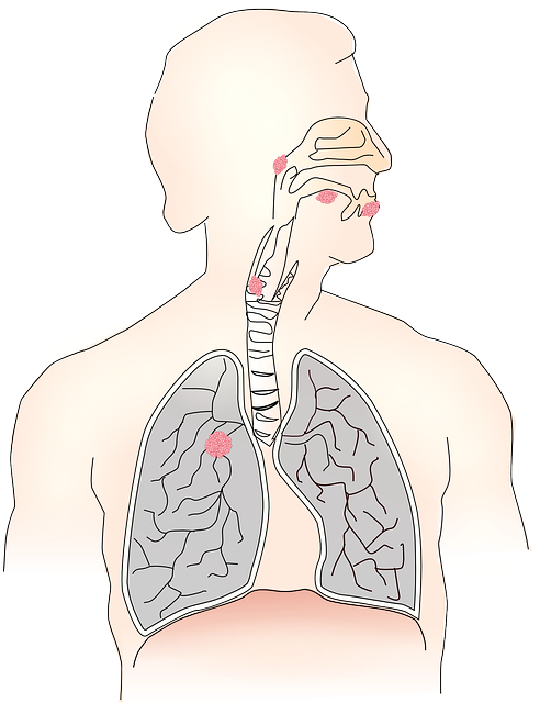 Mesothelioma Asbestosis Difference