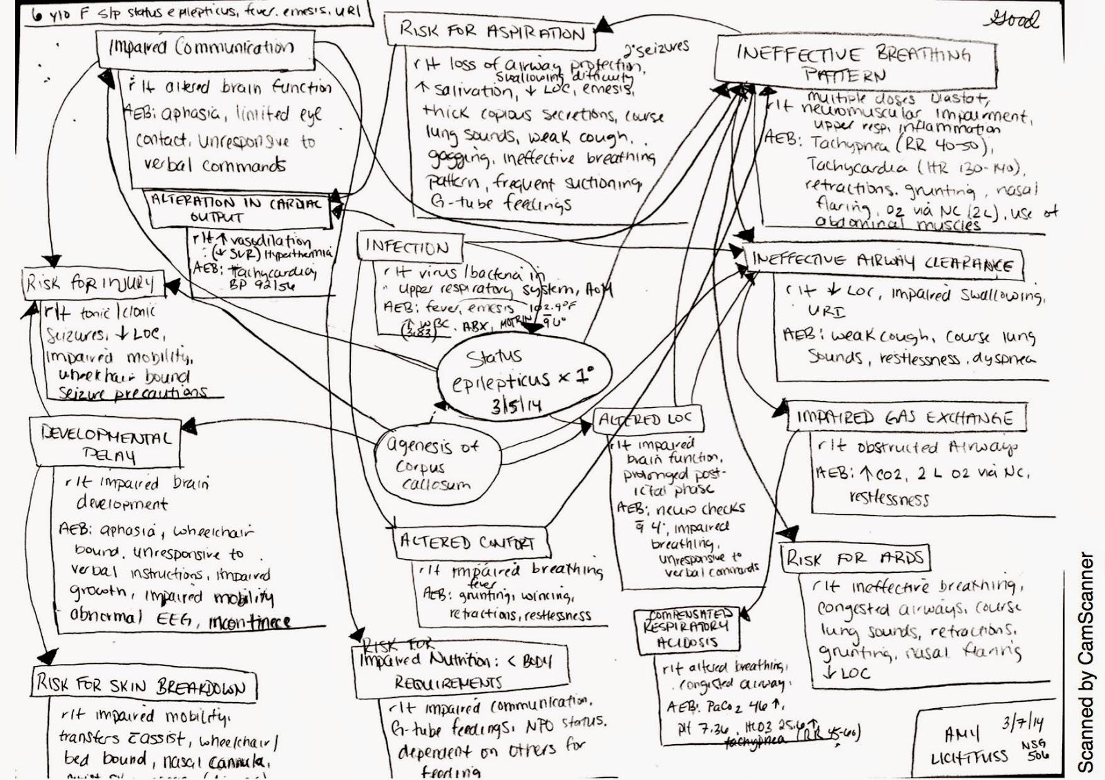 Nursing Portfolio Icu Concept Maps