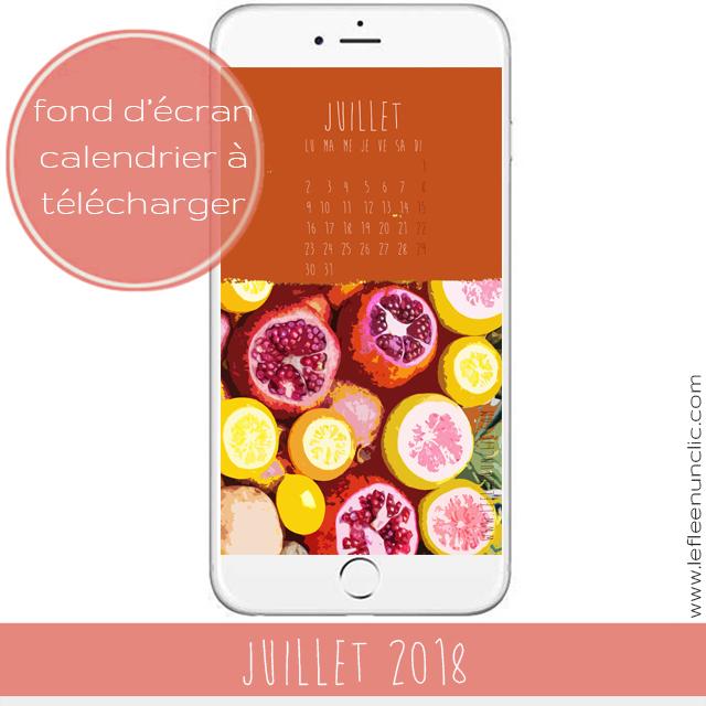 fond d'écran portable, calendrier 2018, juillet 2018, FLE, le FLE en un 'clic'