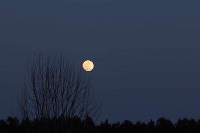 Full moon in March Sugar moon? Snow Crust Moon?