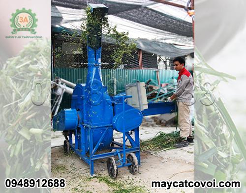 kỹ thuật viên vận hành máy băm cỏ cho bò sữa 3A 9RC-100