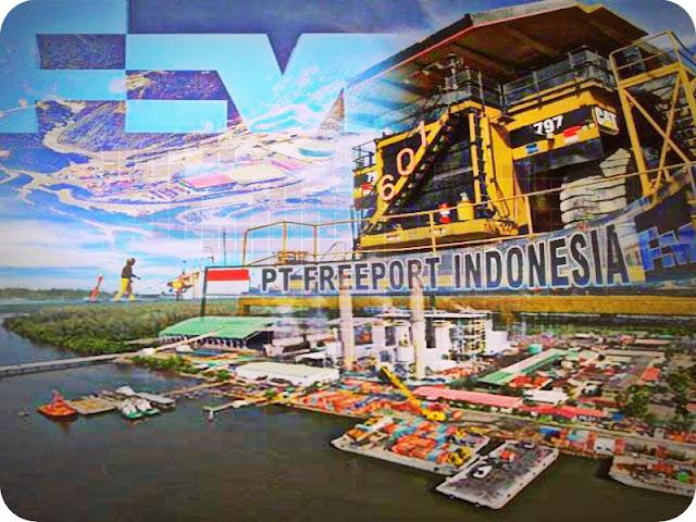Terkait PTFI, Budi Susilo Soepandji Minta Pemerintah Pertimbangkan Papua