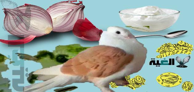 جميع أنواع اسهال الحمام وكيفية علاجها بالدواء والأعشاب الطبيعية