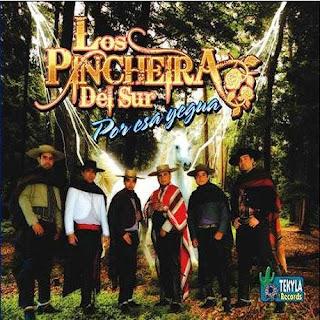 Los Pincheiras del Sur por esa yegua