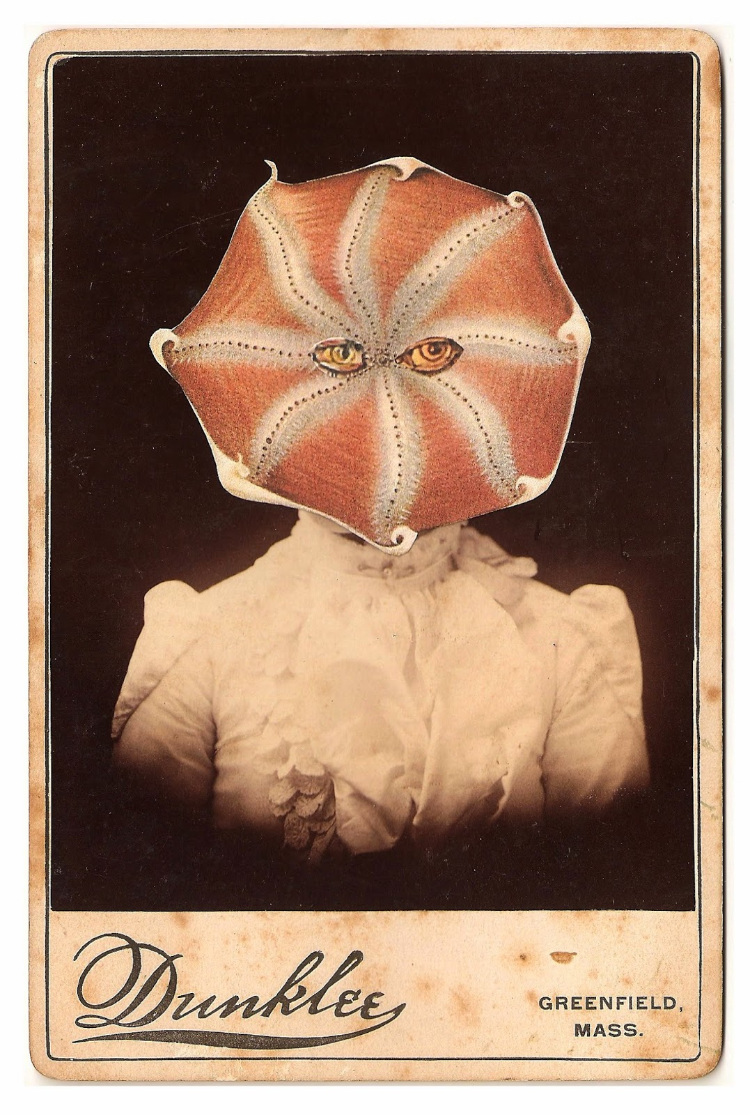 Weird And Strange Collage Images Using Vintage Cabinet