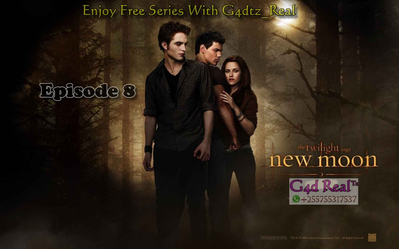 twilight saga series download
