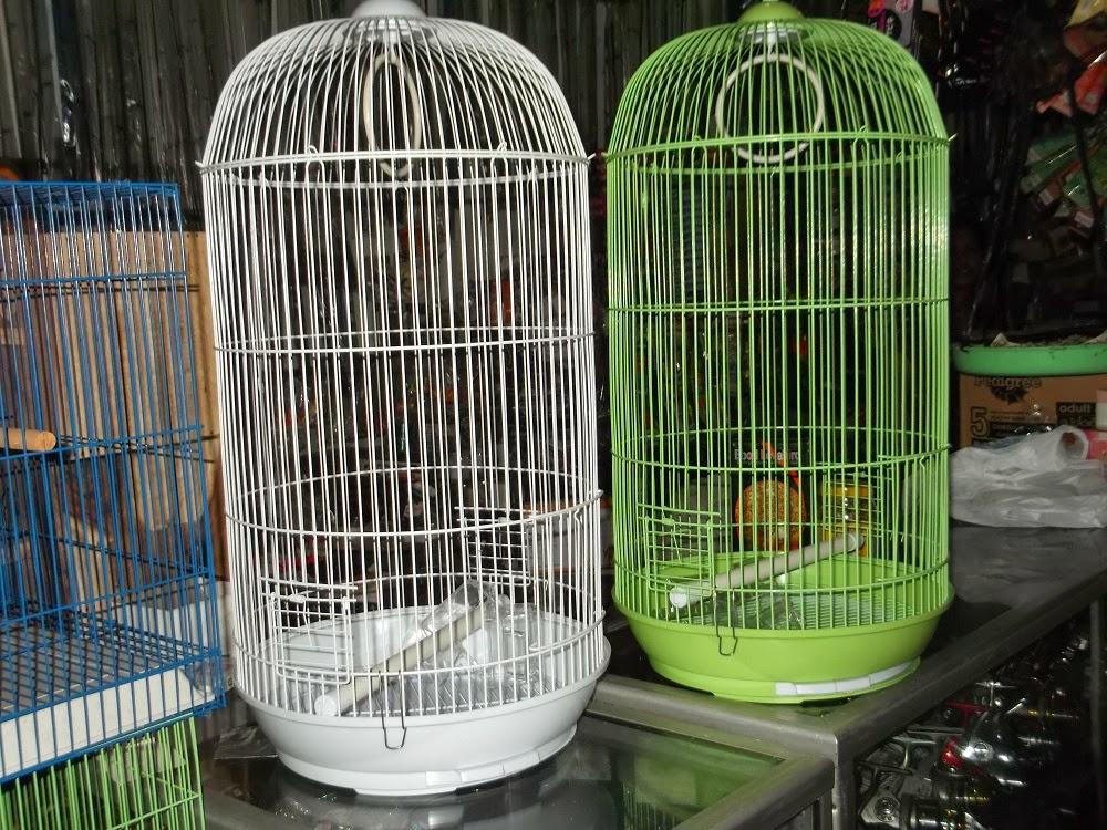 sangkar lovebird
