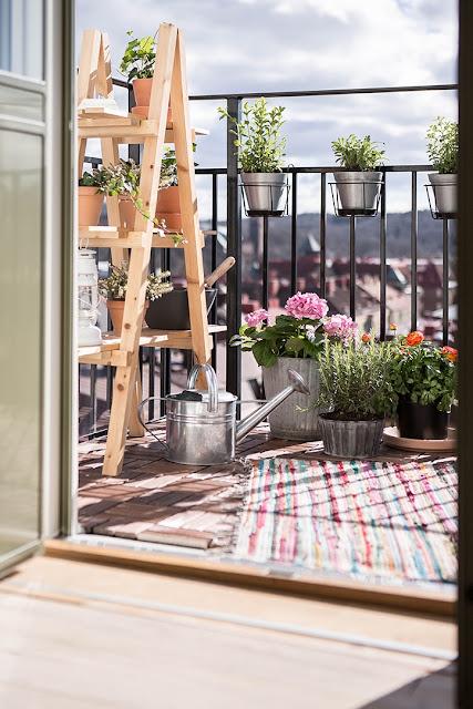 rośliny na balkonie, jak urządzić balkon