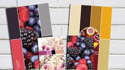 Variedad En Color 4