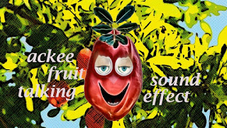 fruit networks