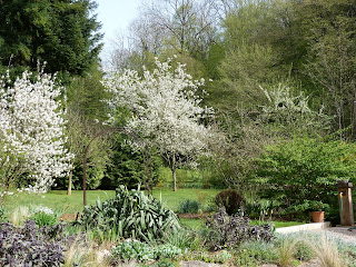 Les Pins Noirs: Une petite visite du jardin...