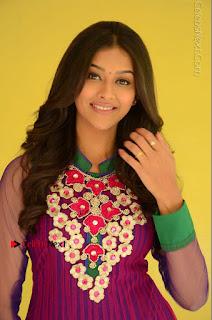 Actress Pooja Jhaveri Latest Stills in Purple Salwar Kameezt at Dwaraka Success Meet  0096.JPG