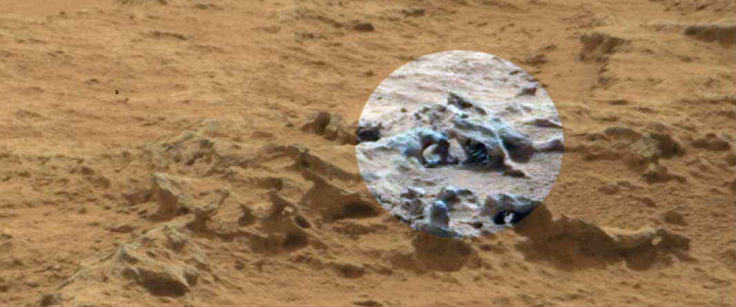 NASA Alien Fossils - Pics about space