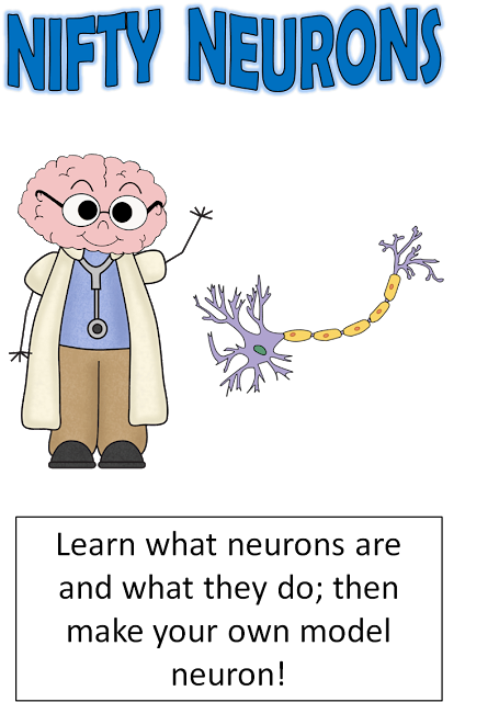 neurons, dendrites, Brain Awareness Week, brain activities, model neurons