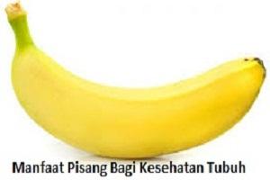 manfaat pisang, khasiat pisang, manfaat pisang untuk pria, manfaat pisang ambon,manfaat pisang untuk wanita,manfaat pisang,manfaat pisang barangan,manfaat pisang untuk wajah,  manfaat pisang kepok, makan pisang, kandungan pisang, masker pisang