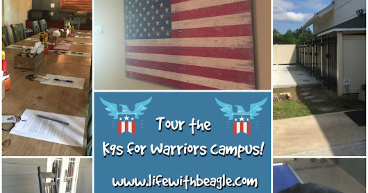 K9s for Warriors save veterans, dogs: Tour the campus and learn how to help