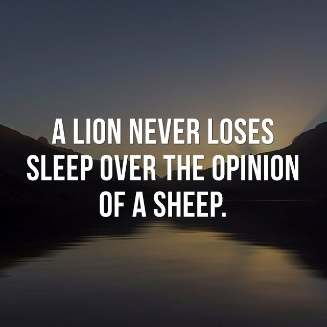 A lion never loses sleep over the opinion of a sheep. - Inspirational Messages