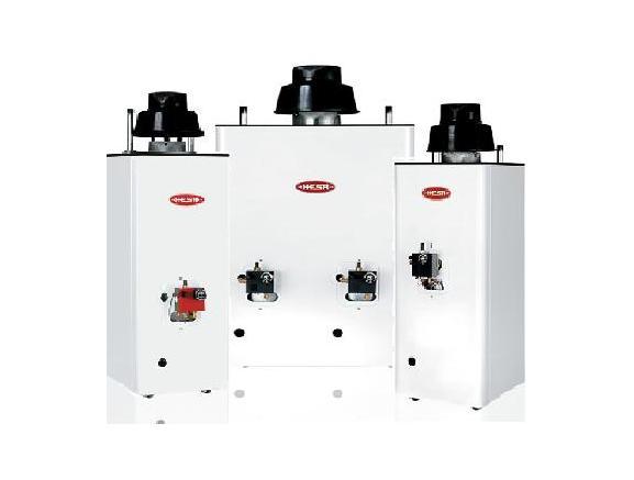 Venta y reparaci n de calentadores de agua boilers - Calentadores de gas bosch ...