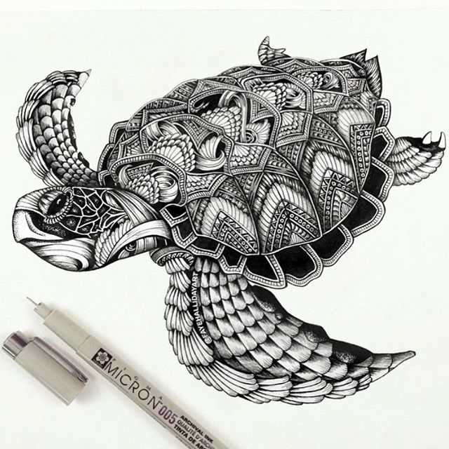 19-Sea-Turtle-Faye-Halliday-Haathi-Detailed-Drawings-Representing-Complex-Animal-www-designstack-co