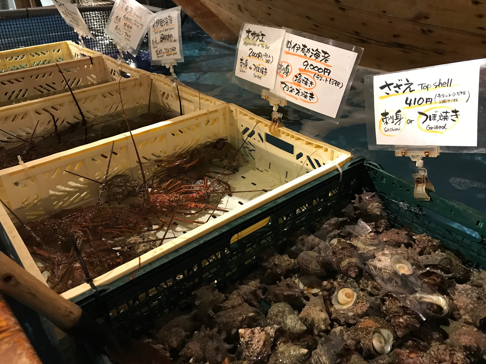 Tokyo restaurants fish your own meal at the fishing for Zauo fishing restaurant