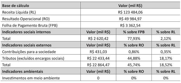 tabela apresenta dados de uma versão resumida do Balanço Social anual de 2017 de uma empresa
