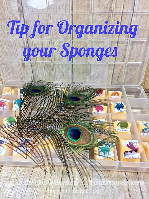 Tip, Organizing, Sponge, Sponges, Circle Tab Punch, Card, Stampin Up