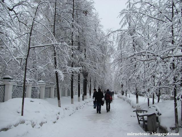Такая весна (или на что похожа весна в Сибири)