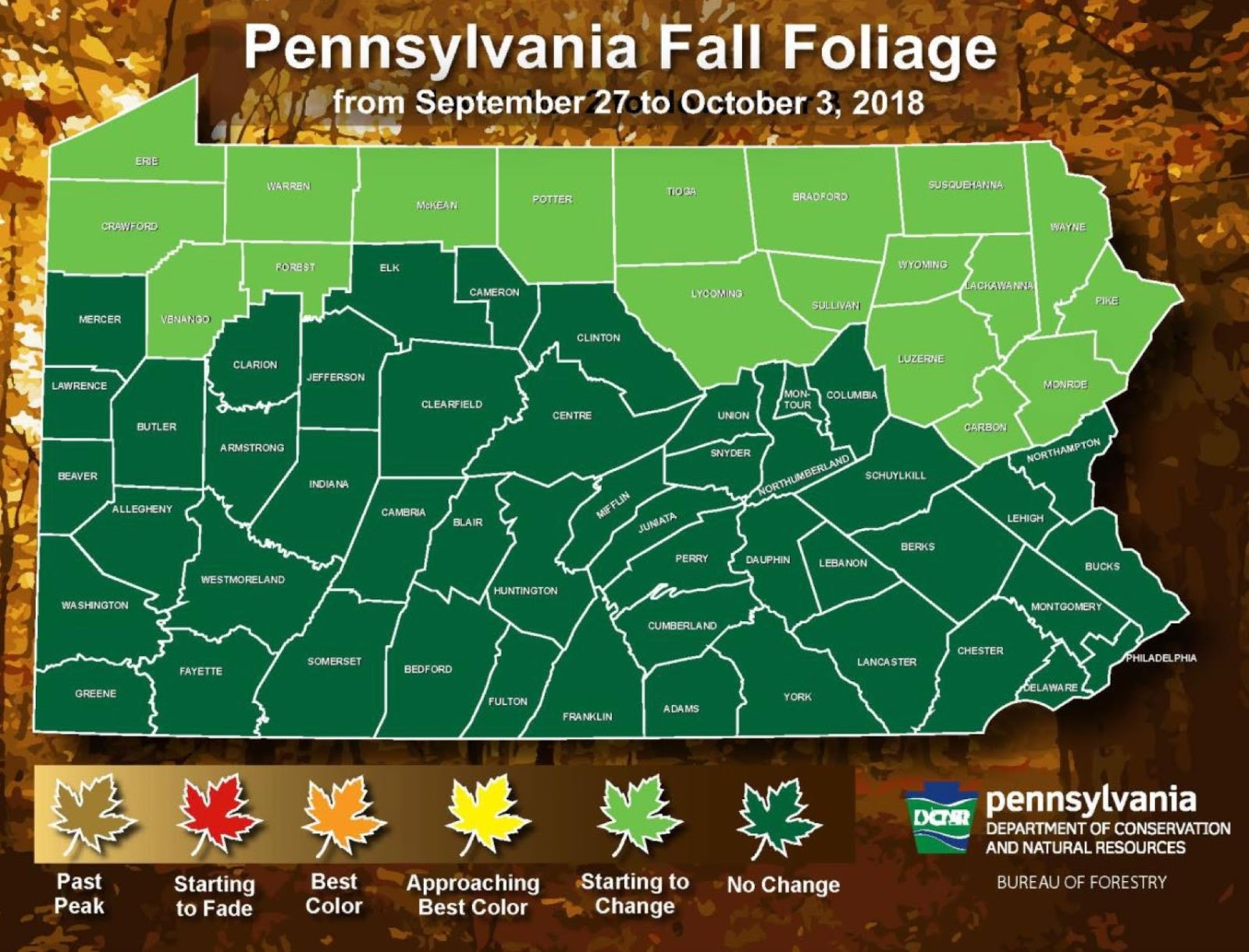week 1 fall foliage report trees starting to change along pa s northern border