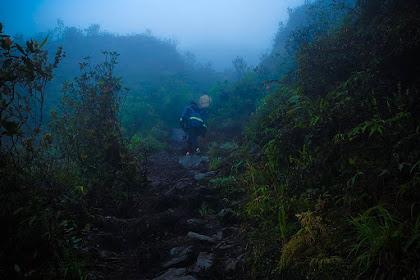 Tips Apa Yang Harus Dilakukan Ketika Tersesat Di Gunung