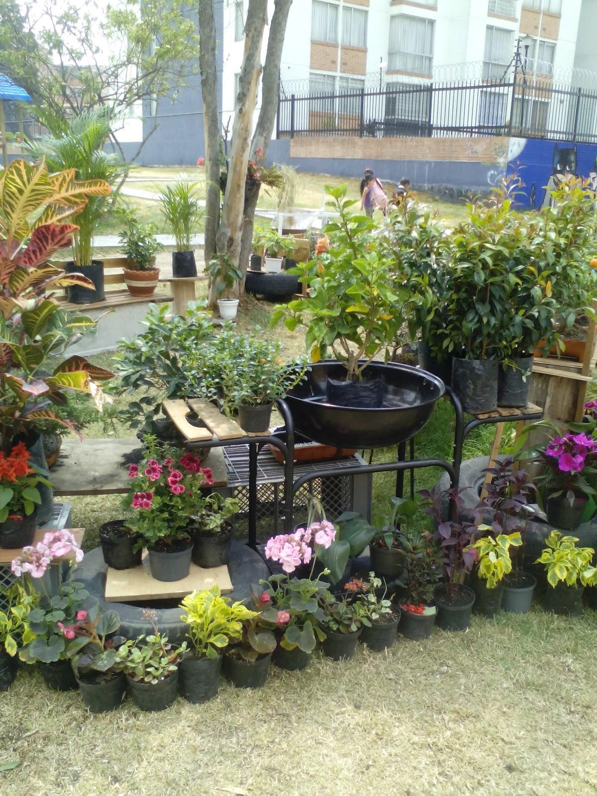 Mi xito vivero jardineria for Concepto de plantas ornamentales