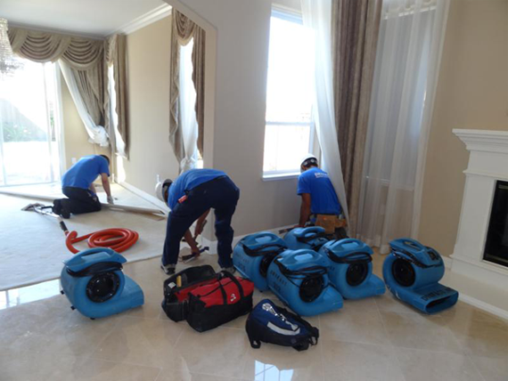 Water Damage Restoration Dallas TX