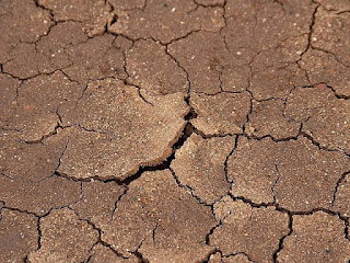 Dry ground - Dry skin can cause itchy chin and jawline