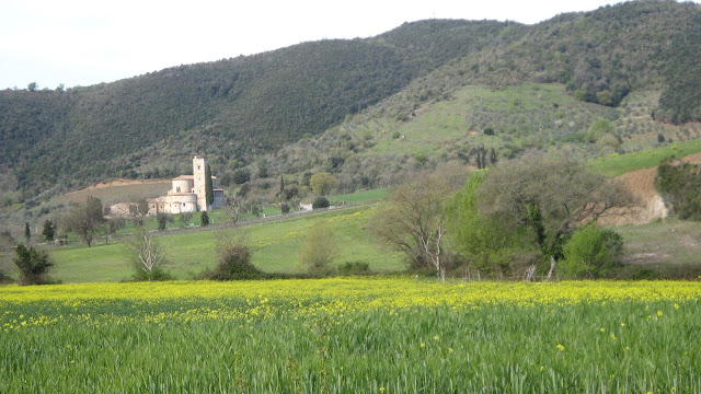 Sant'Antimo abbey in spring. Seen from the road that leads to Montalcino.