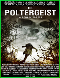 The Poltergeist of Borley Forest (2013) | 3gp/Mp4/DVDRip Latino HD Mega
