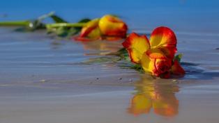 fiori bellissimi per persone morte