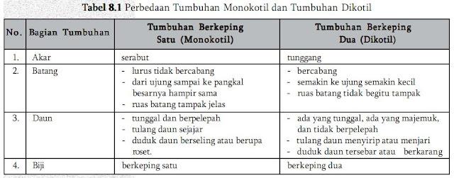 Tabel Perbedaan Tumbuhan dikotil dan tumbuhan monokotil
