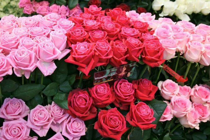 Fungsi dari bunga mawar