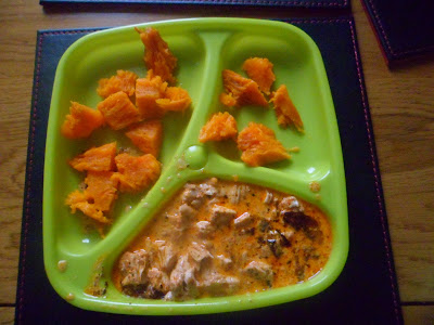 Baby portion of paprika chicken and jacket sweet potato chunks