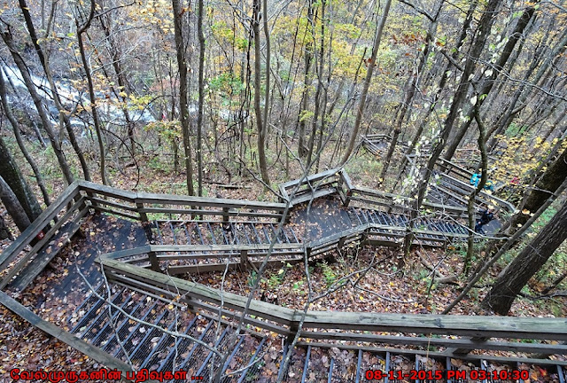 Amicalola Falls Steps - Top of Falls Trail