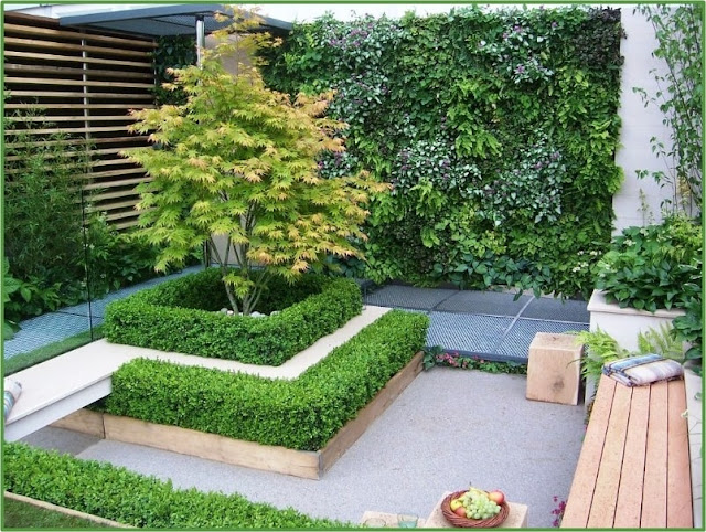 Desain Taman Depan Rumah Mungil