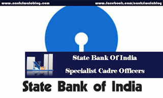 Specialist Cadre Officers Job 2016