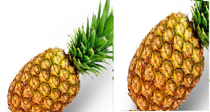 Pineapple meaning in tamil, telugu, marathi, kannada, malayalam, in hindi name, gujarati, indian name, english, other names called as, translation