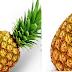 Pineapple meaning in tamil, telugu, marathi, kannada, malayalam, in hindi name, gujarati, indian name, english, other names called as, translation