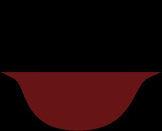 Европейска супа