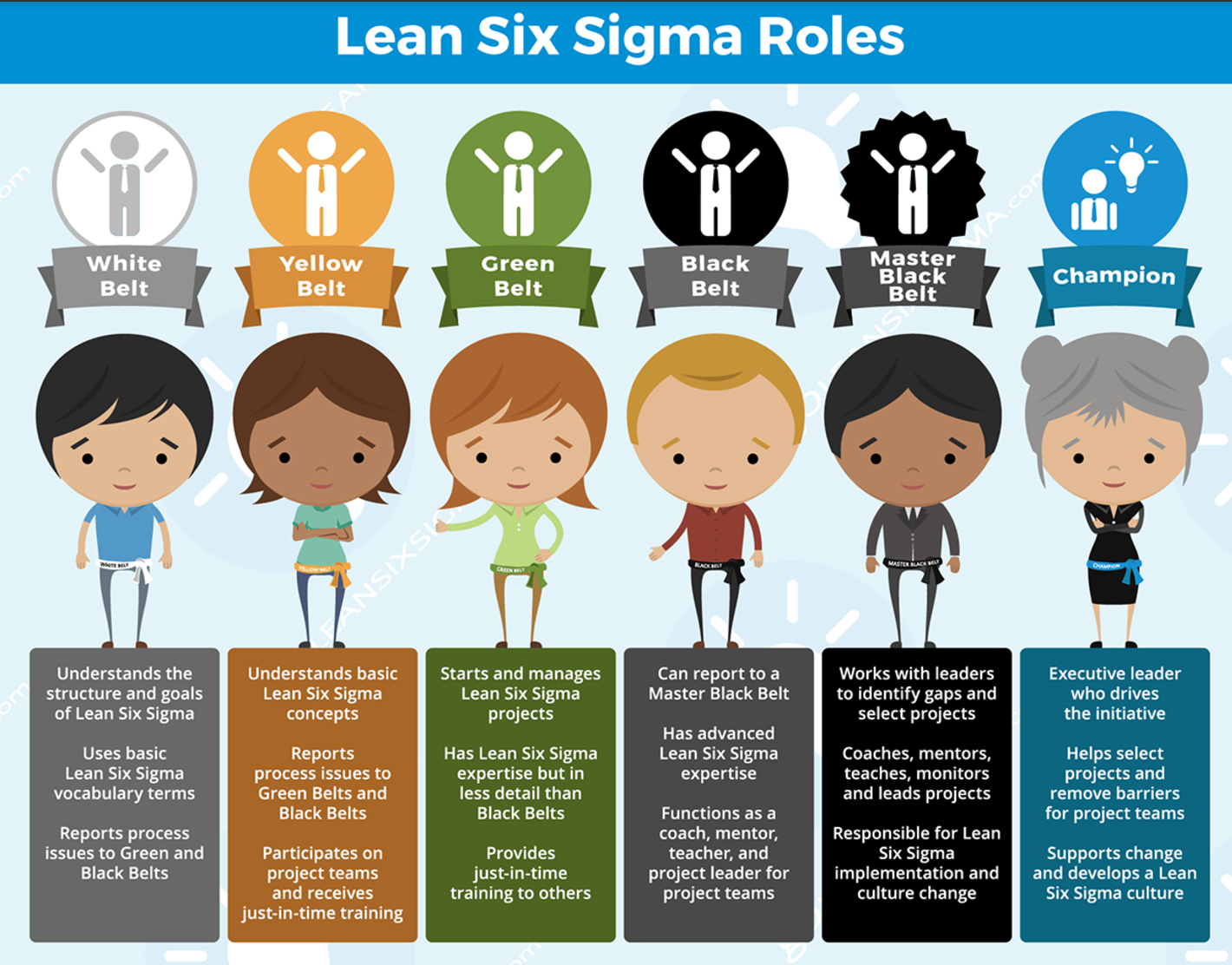 Sht lean sigma says the six things wrong with the six roles of i was curious if i could find six things wrong with the diagram and the assumptions of many approaches to lean six sigma click on the illustration for a xflitez Image collections
