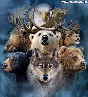 9 totem állat és szimbolikájuk