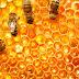 Mật ong Yên Dưỡng 100% tự nhiên nguyên chất