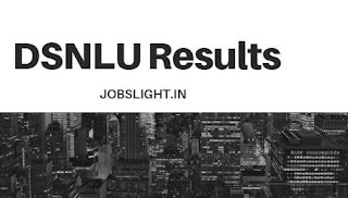 DSNLU Results